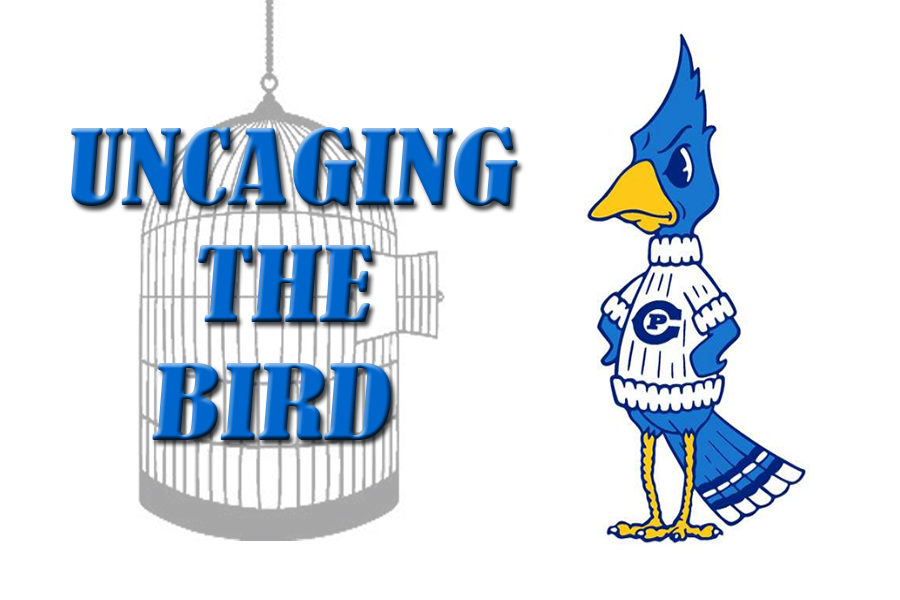 Uncaging the Bird Podcast, Episode 3